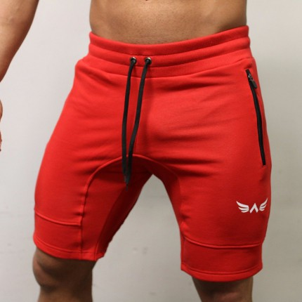 Pánska kolekcia - Exalted - Fitness šortky pánske X1 (červená)